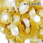 Everest Shatter NYC Diesel 3