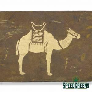 Camel Lebanese Hash AAAA