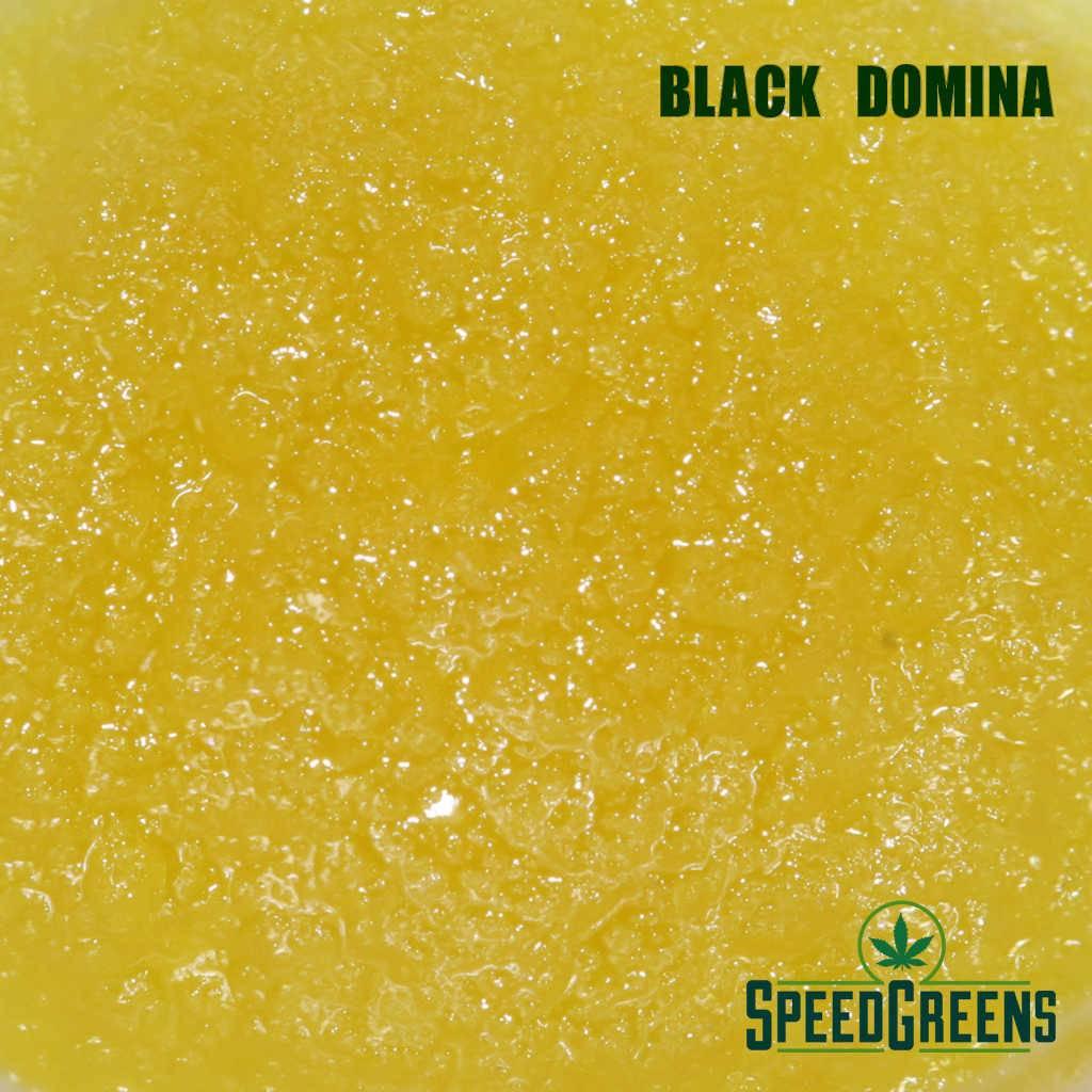 HV HTFSE Black Domina Sauce IndicaBlend 6