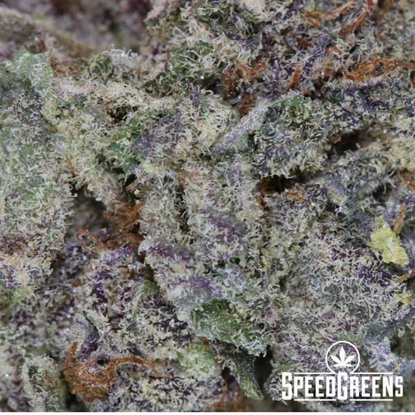 Purple Space Cookies 4