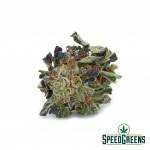 purple_skunk_aaa-2-cannabis_optimized