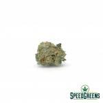 Blueberry-muffin-smalls-AAAA-cannabis-3