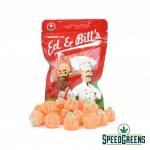 Ed & Bill's Pumpkins-2