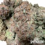 Premium All-Flower Baxter Blunts Sativa