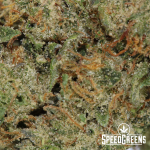 bruce_banner_smalls_aaaa-4-cannabis