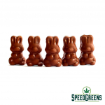 alice-mushroom-milk-chocolate-3