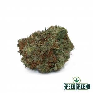master_kush_aa-cannabis