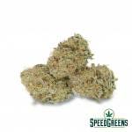 san_francisco_sour_dough_aaaa-3-cannabis