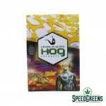 HOG-ghost-rider-01-min