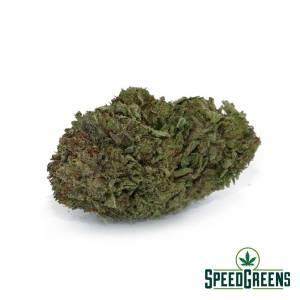comatose-og-aaa-cannabis
