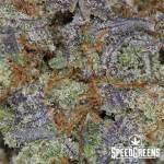 do-si-dos_craft_top_shelf-_aaaa-4-cannabis